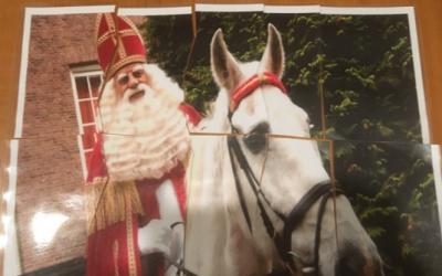 Sinterklaasopkomst Welpen – Het pietendiploma